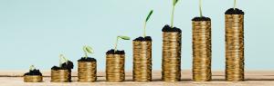 Online leads meer winst | yndenz