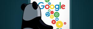 Unieke webshop content en Google Panda | yndenz