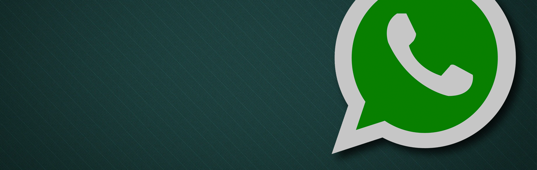 Trend: WhatsApp marketing | yndenz