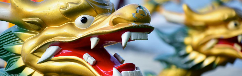 yndenz prolongeert titel in Drakenbootrace Nijkerk 2015 | yndenz