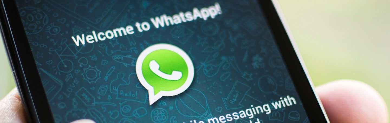 WhatsApp zakelijk inzetten | yndenz